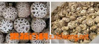 花菇和香菇的区别 香菇保湿用什幺香菇