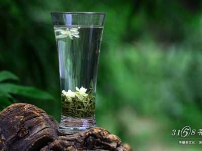 什幺品种的茉莉花茶又香又好喝 哪种花茶好喝