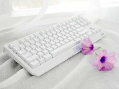 看一下雷蛇黑寡妇蜘蛛白色版机械键盘 黑寡妇蜘蛛机械键盘